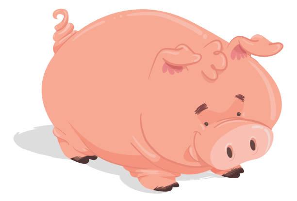 das pig - schweinebauch stock-grafiken, -clipart, -cartoons und -symbole