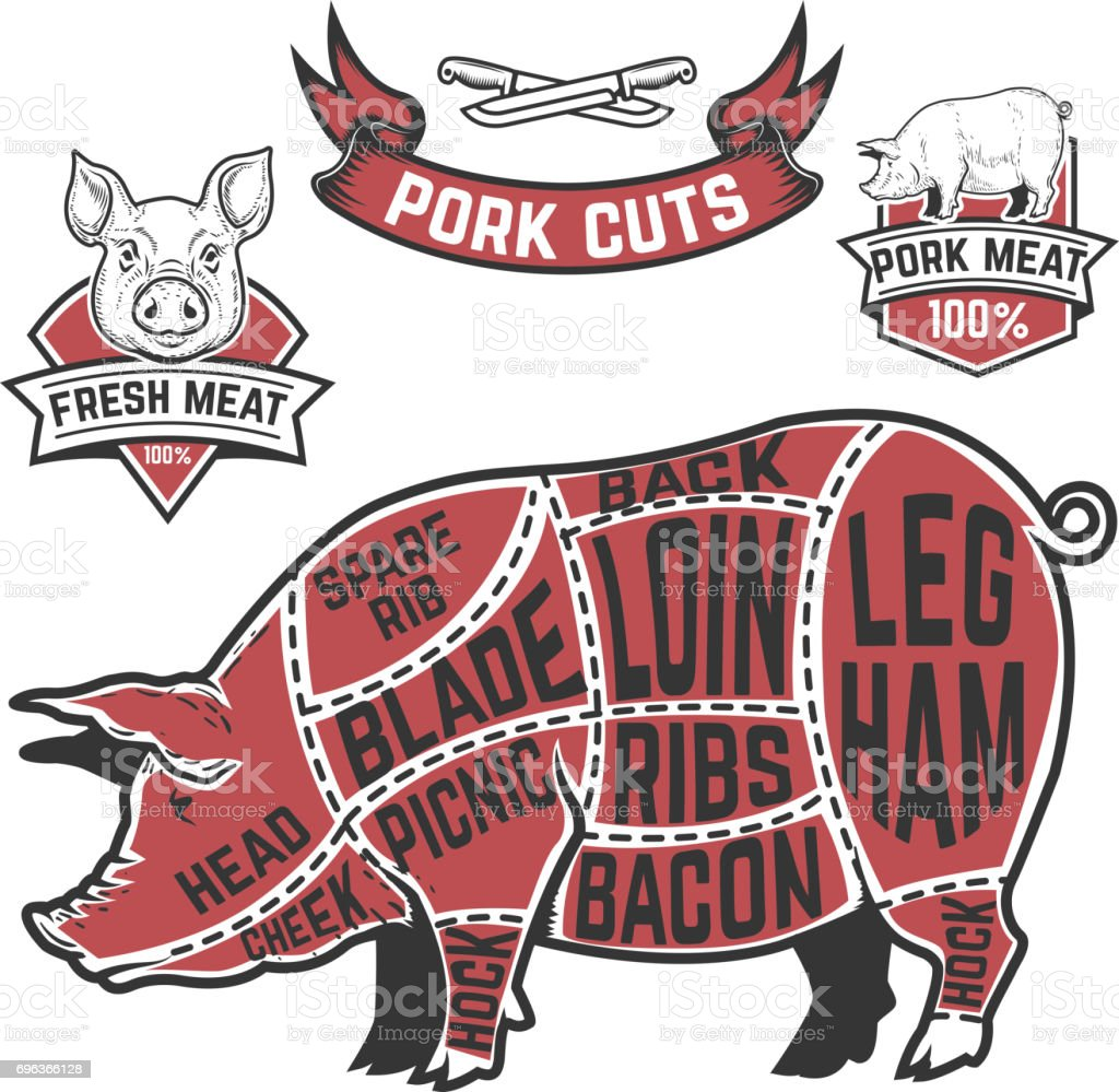 Pork Cuts Butcher Diagram Cow Illustrations On White Background ...