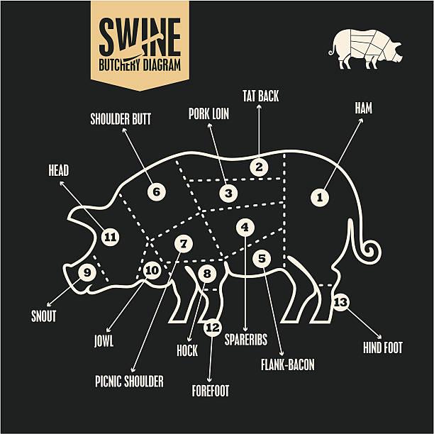 Royalty Free Pork Shoulder Clip Art, Vector Images & Illustrations ...