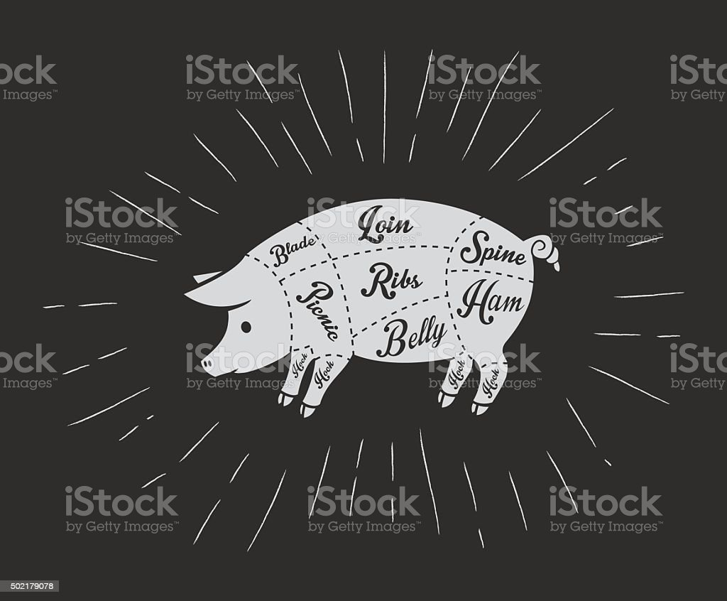 Wunderbar Schwein Knie Anatomie Zeitgenössisch - Anatomie Und ...
