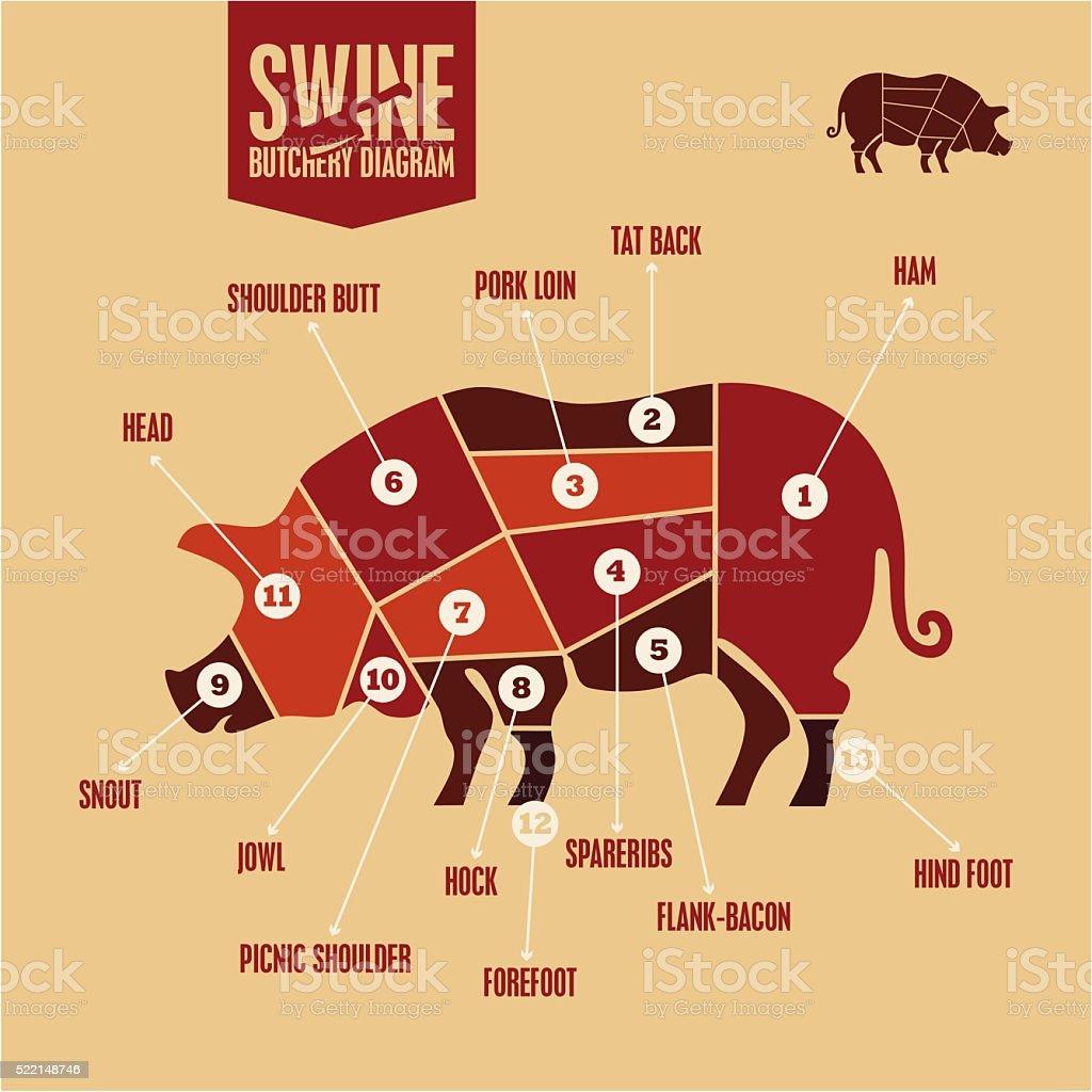 Pork meat cuts. Butcher shop vector art illustration