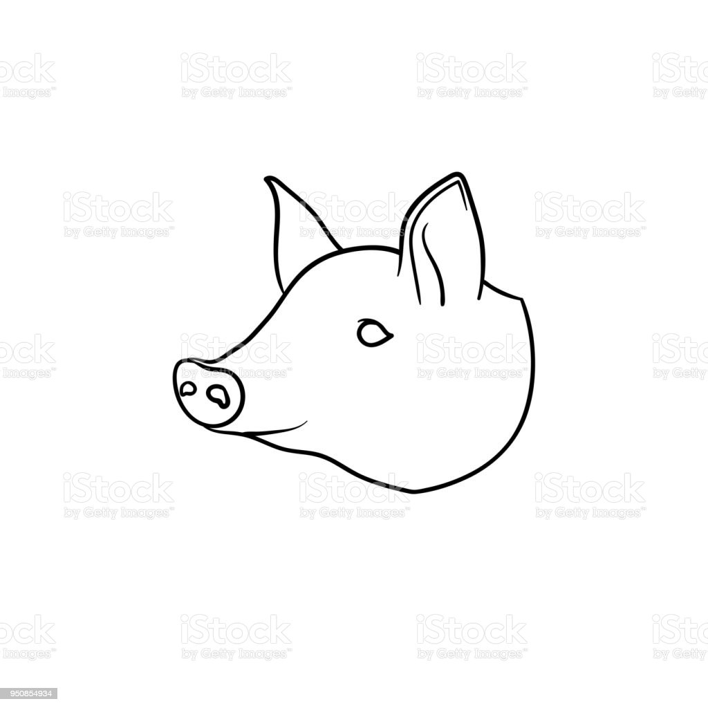 Fantastisch Schwein Auge Anatomie Ideen - Menschliche Anatomie ...