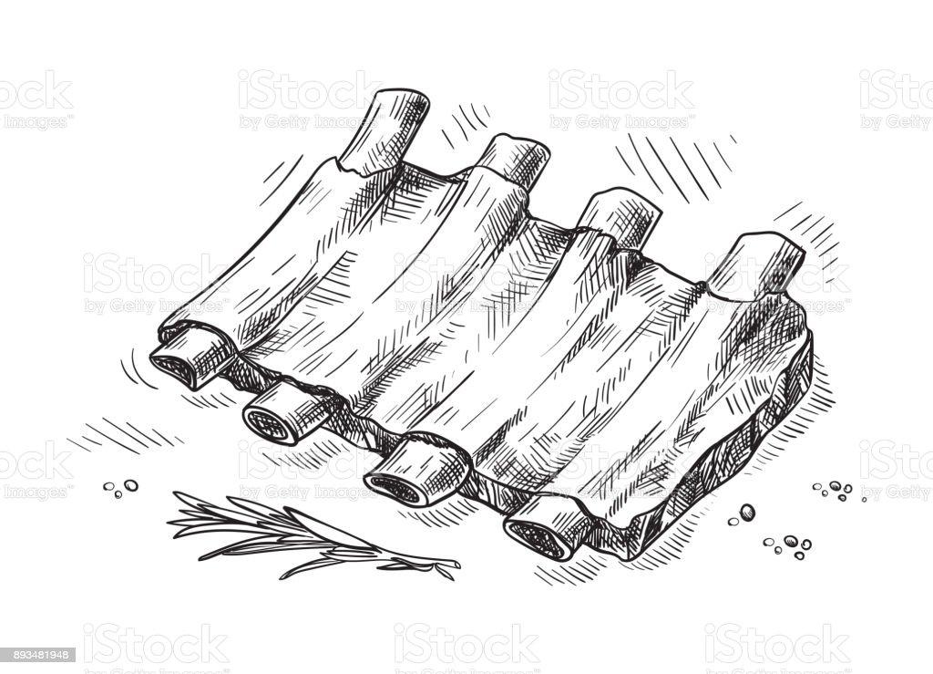 Pork ribs isolated on white background vector art illustration