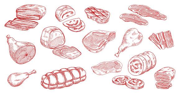 Pork sausage, veal ham and lamb meat sketch vector