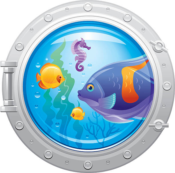 Porthole with underwater life, fishes vector art illustration