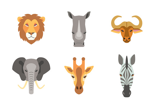 portrait collection of african wild animal isolated on white background flat vector illustration