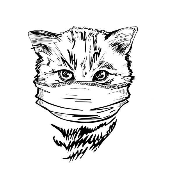 ilustrações de stock, clip art, desenhos animados e ícones de portrait of a cat in a medical mask. pandemic. covid-19. - covid hair