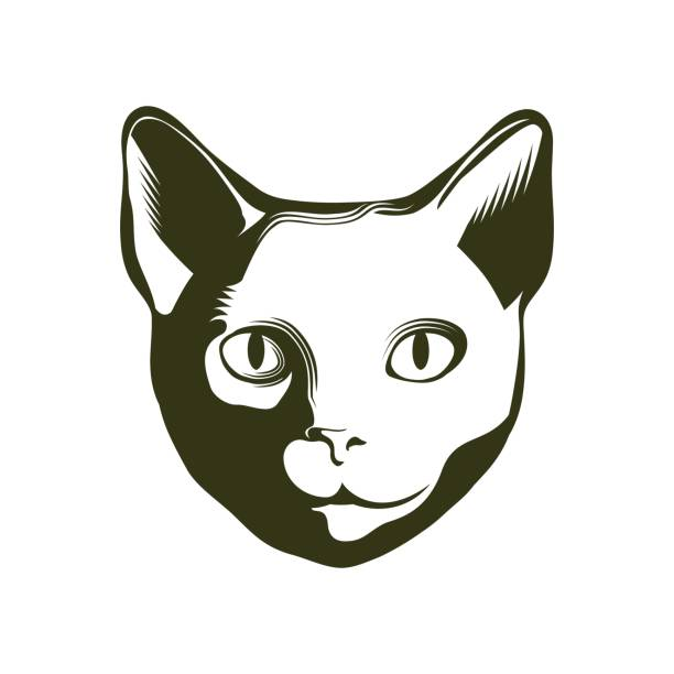 ilustraciones, imágenes clip art, dibujos animados e iconos de stock de retrato de un gato. ilustración de vector. - animales de granja