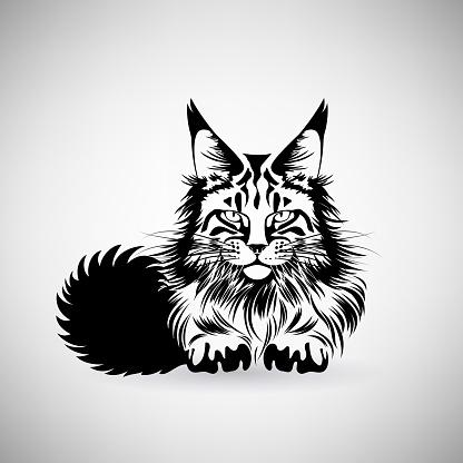 Portrait of a Cat with a Predatory Gaze