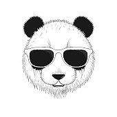 Portrait of a Panda in sunglasses.