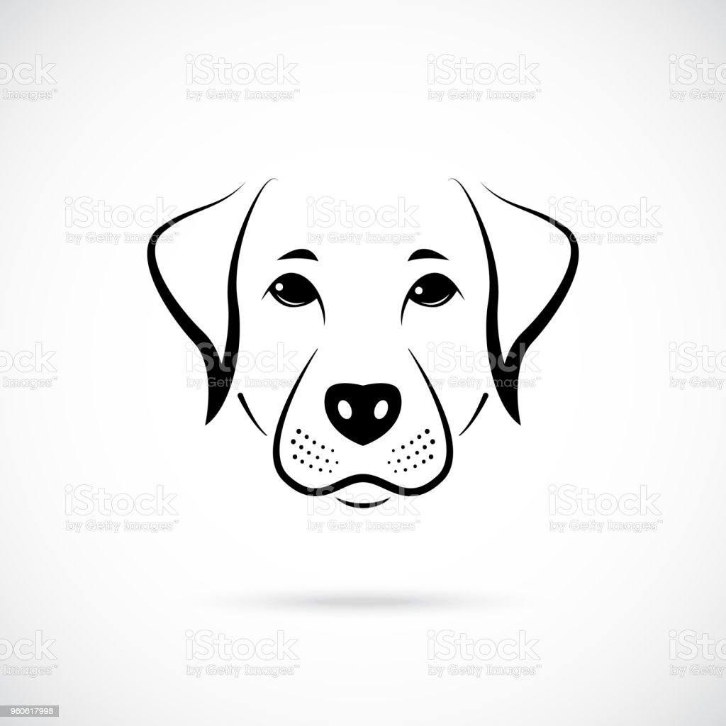 Portrait of  Australian Pinscher. Black and white logo. Vector illustration. vector art illustration