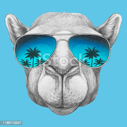 istock Portrait of Camel with sunglasses. Hand-drawn illustration. Vector isolated elements. 1189110347