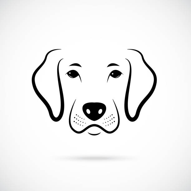 Dogs Nose Illustrations, Royalty-Free Vector Graphics
