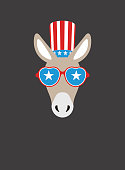 Portrait of donkey, wearing something, like Democratic Party US, cool style