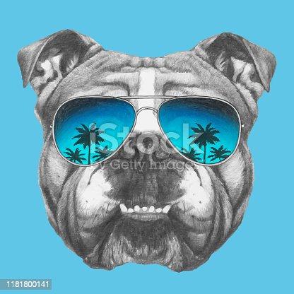 Portrait of English Bulldog with sunglasses. Hand-drawn illustration of dog.
