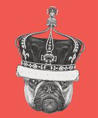 Portrait of French Bulldog with crown.