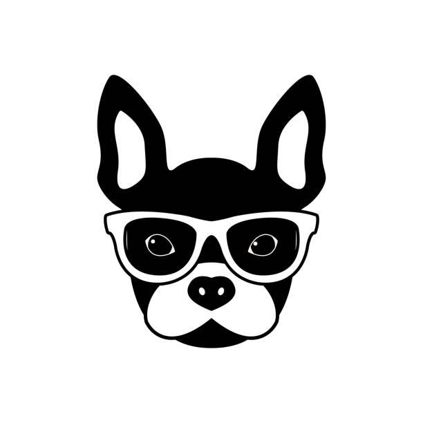 porträt von französische bulldogge mit brille, schwarzen und weißen flachen stil. vektor-illustration von hipster hund. - schoßhunde stock-grafiken, -clipart, -cartoons und -symbole