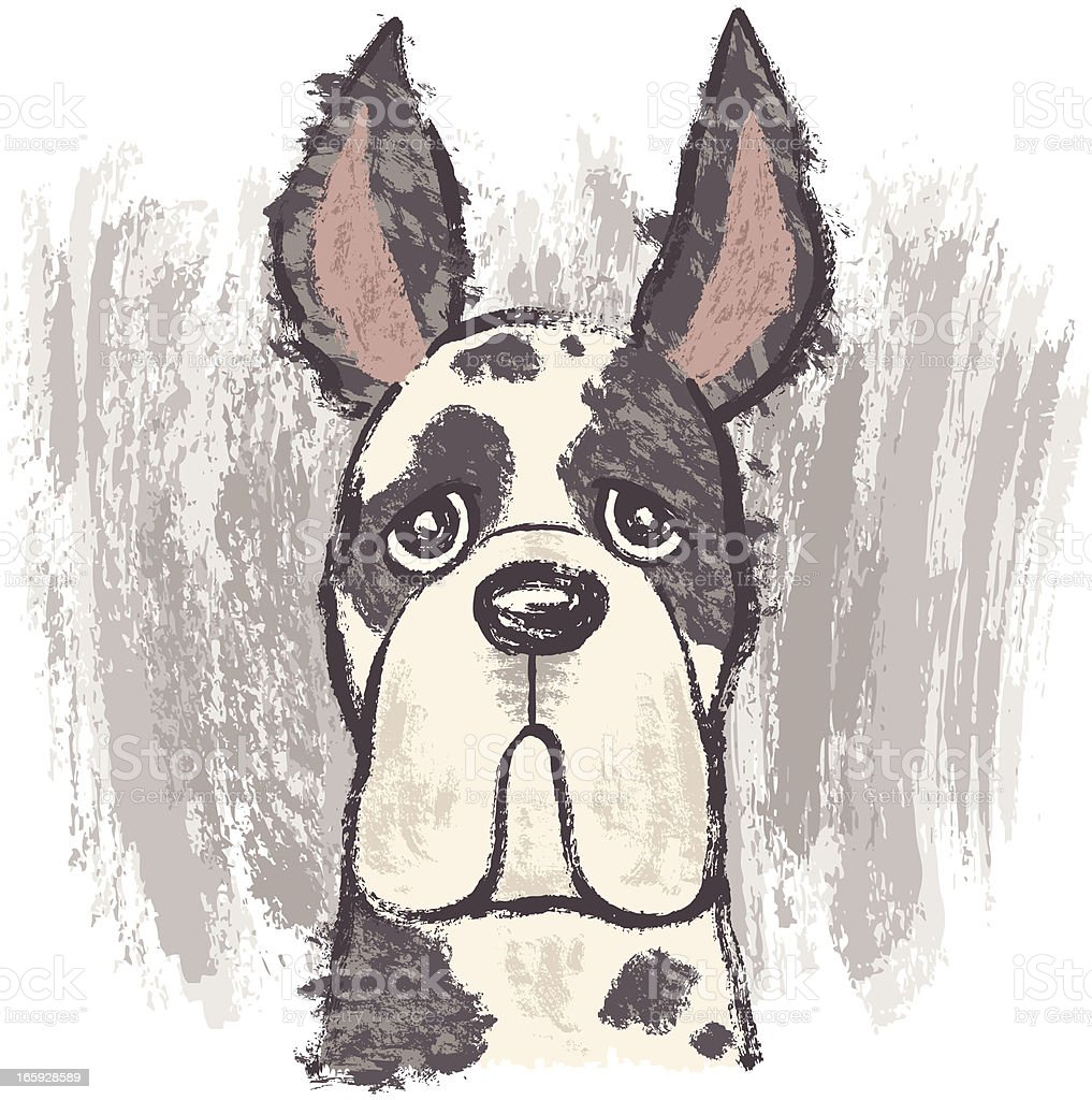 Portrait of Great Dane royalty-free portrait of great dane stock vector art & more images of animal