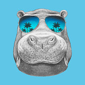 istock Portrait of Hippopotamus with sunglasses. Hand-drawn illustration. Vector isolated elements. 1189111216