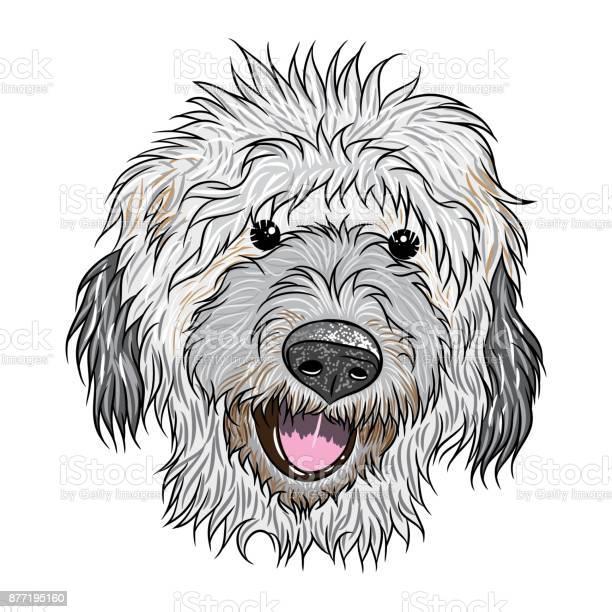 Portrait of labradoodlen puppy hand drawn dog illustration t shirt vector id877195160?b=1&k=6&m=877195160&s=612x612&h=vqjcesxcu3lckdtzkktlgyr 6boxjukn vddnplczia=