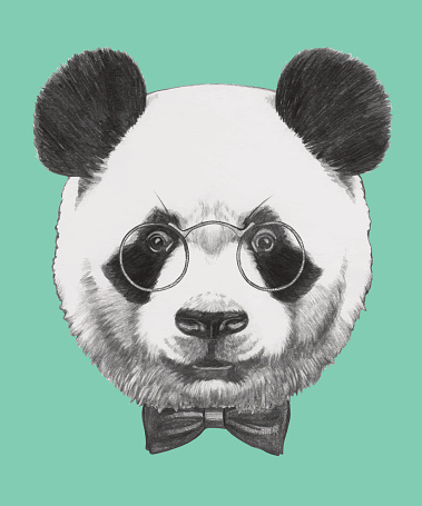 Portrait of Panda with glasses and bow tie.