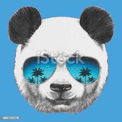Portrait of Panda with mirror sunglasses.