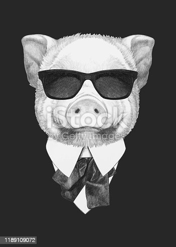 istock Portrait of Pig in suit. Hand-drawn illustration. Vector isolated elements. 1189109072