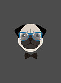 Portrait of pug dog, wearing glasses and bow tie, like a teacher, cool style