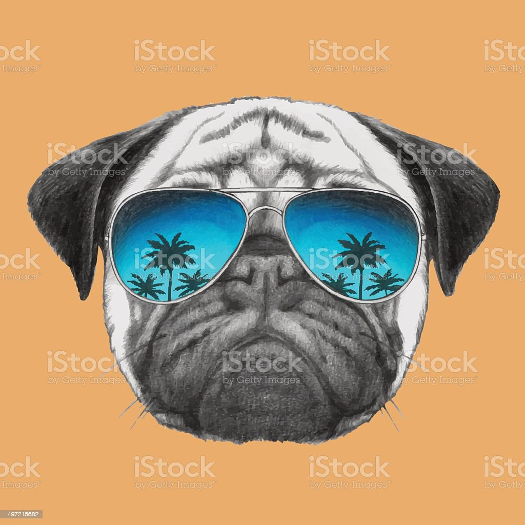 Portrait of Pug Dog with mirror sunglasses. vector art illustration