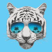 Portrait of Tiger with mirror sunglasses.