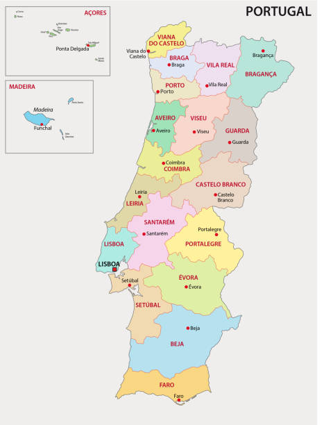 ilustrações de stock, clip art, desenhos animados e ícones de portugal administrative map - funchal madeira