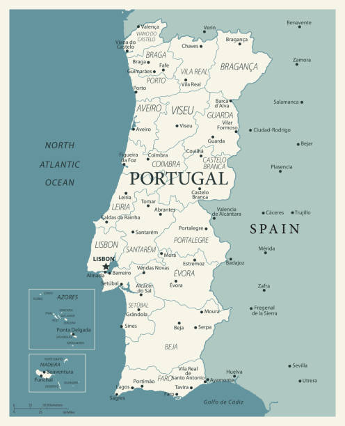 ilustrações de stock, clip art, desenhos animados e ícones de 24 - portugal - vintage murena isolated 10 - aveiro