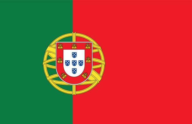 ilustrações de stock, clip art, desenhos animados e ícones de portuguese flag - funchal madeira