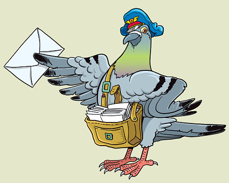 Postal pigeon