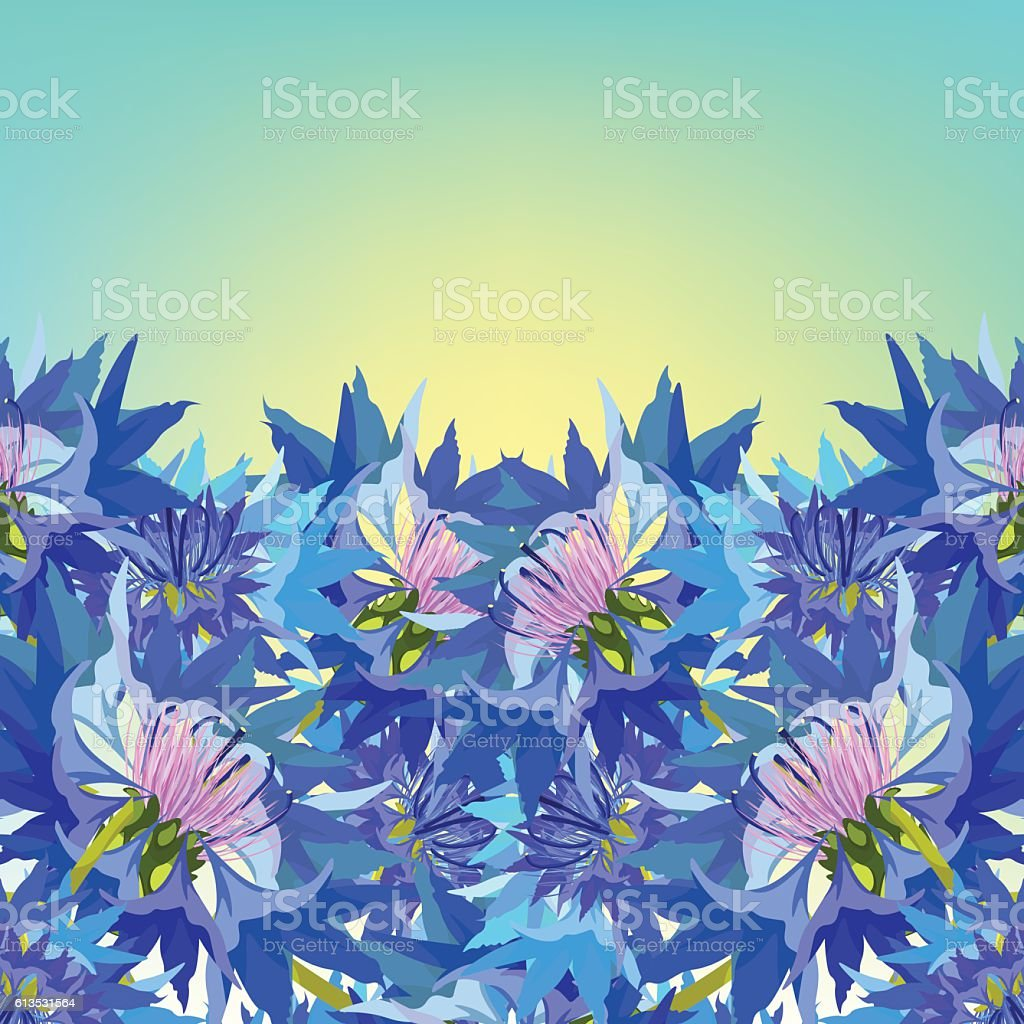 Postcard cornflower of wild flowers at dawn vector illustration postcard cornflower of wild flowers at dawn vector illustration royalty free postcard cornflower of izmirmasajfo