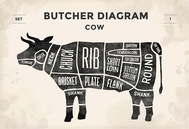 plakat rzeźnik schemat i programu-krowa - ciąć stock illustrations
