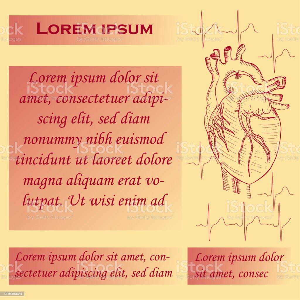 Plakat Für Studien Des Menschlichen Herzens Stock Vektor Art und ...