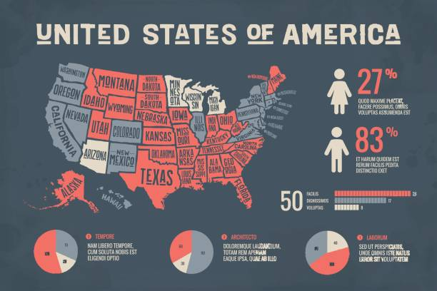 Poster map USA with infographics elements Poster map of United States of America with state names and abstract infographics elements. Detail modern infographic with map of USA, social infographics and information graphics. Vector Illustration country geographic area stock illustrations