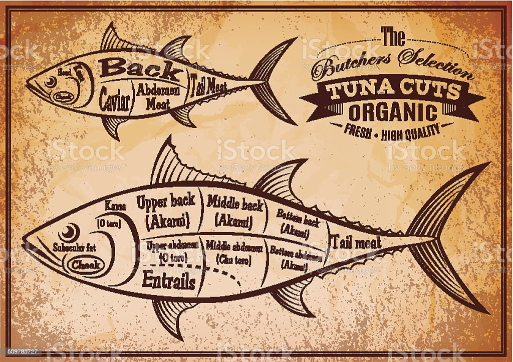 poster with a detailed diagram of butchering tuna vector art illustration