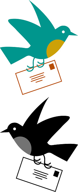 Postman bird