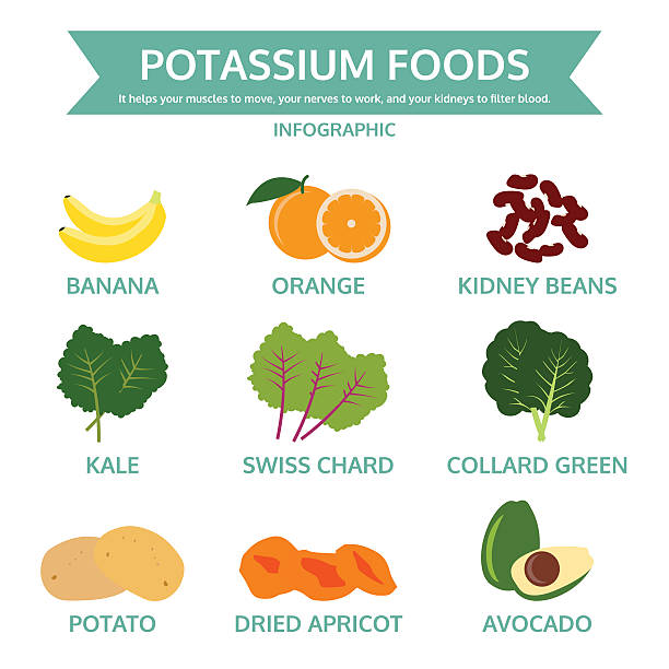 stockillustraties, clipart, cartoons en iconen met potassium foods, food info graphic, vector - kalium