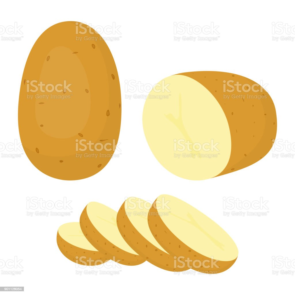 Batatas isoladas no fundo branco - ilustração de arte em vetor