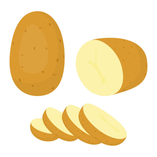 ilustrações de stock, clip art, desenhos animados e ícones de potatoes isolated on white background - batata crua