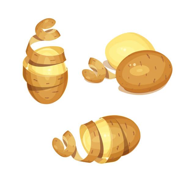 kartoffeln mit schale. pflanzliche lebensmittel - kartoffeln stock-grafiken, -clipart, -cartoons und -symbole