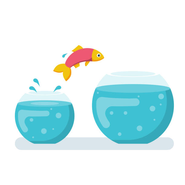 Potential fish jumping to biger fishbowl Potential fish jumping to biger fishbowl. Creative solution. Innovation way. Fish jumping out from small aquarium. Vector illustration flat design. Isolated white background. Highest level, new stage. lateral surface stock illustrations