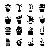 Potted Leaves Icons