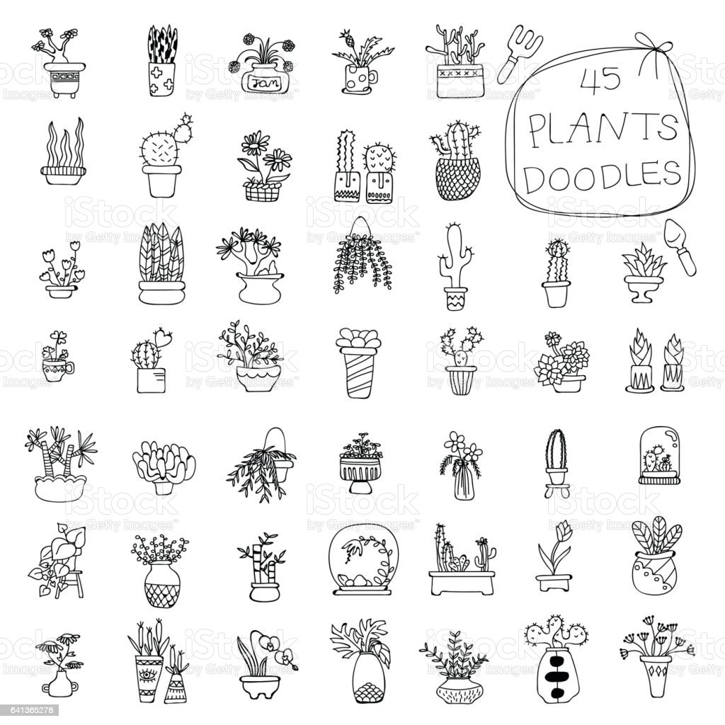 Potted Plants doodles drawing - Royalty-free Art stock vector