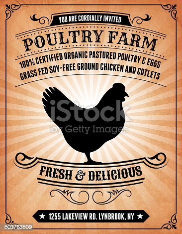 istock Poultry Farm on royalty free vector Background Poster 503763509