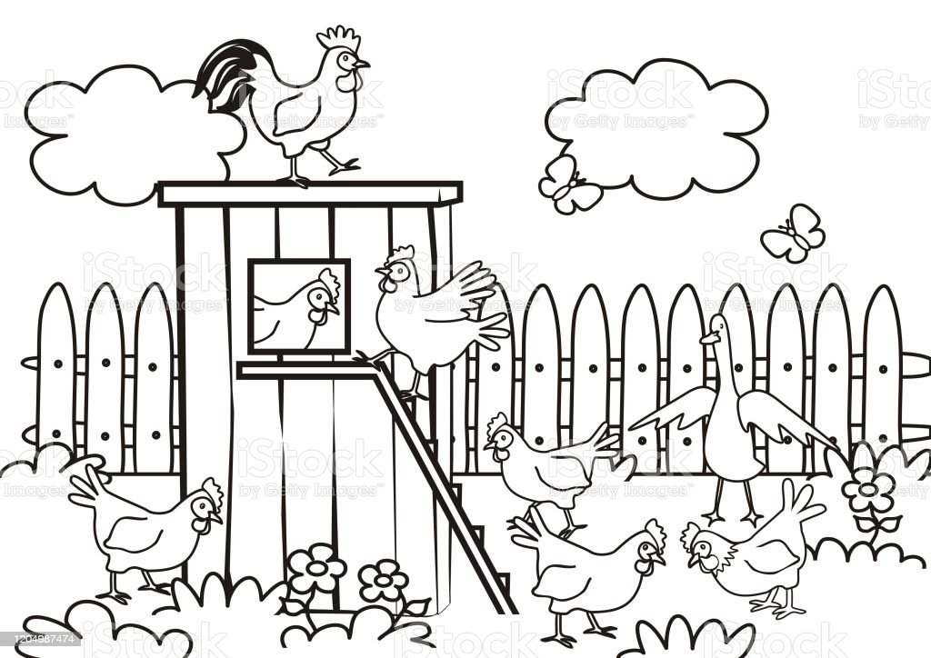 Poultry In The Garden Coloring Book Eps Stock Illustration - Download Image  Now - IStock