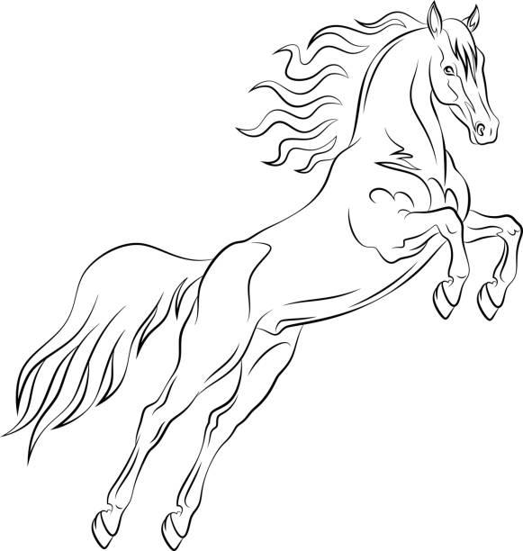springende mustang - freilauf stock-grafiken, -clipart, -cartoons und -symbole